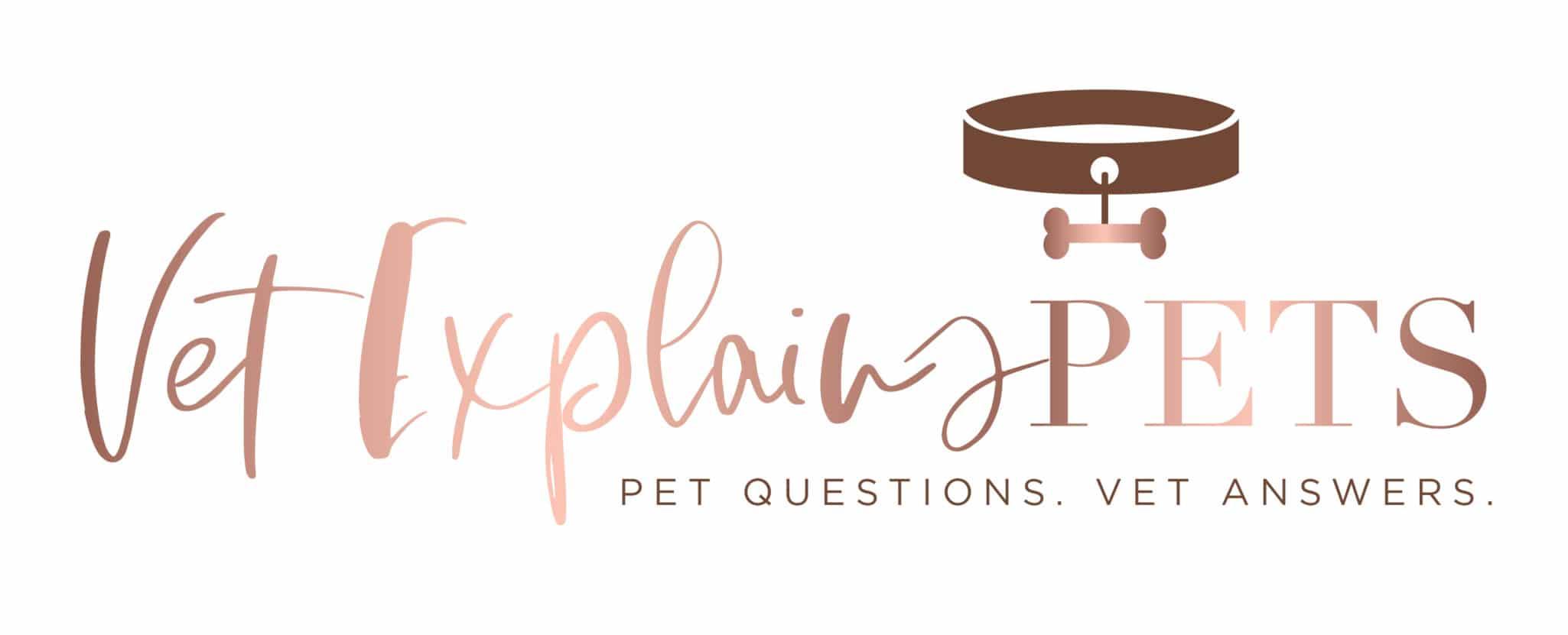 Vet Explains Pets
