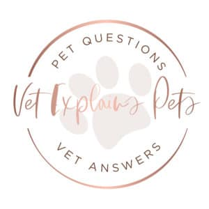 vet explains pets logo for sidebar