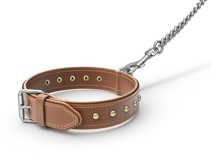 brown leather dog collar on a leash with no dog