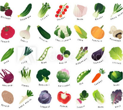 chart of watercolor vegetables