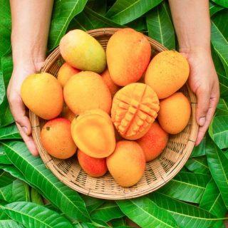 mangoes in basket