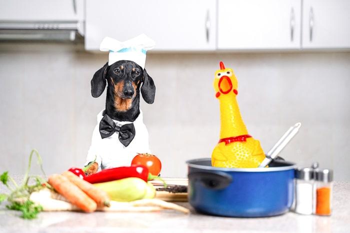 dog wearing chef hat in kitchen