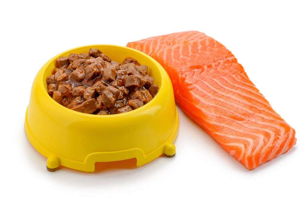 wet dog food in yellow bowl with salmon filet beside it