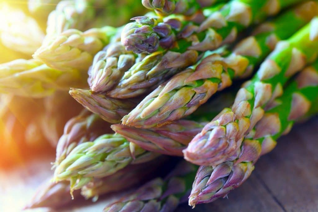 closeup view of asparagus spear heads in sunshine