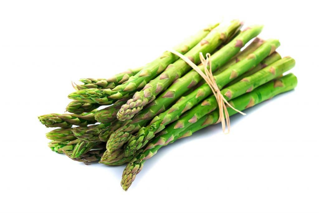 bundle of garden asparagus wrapped in twine