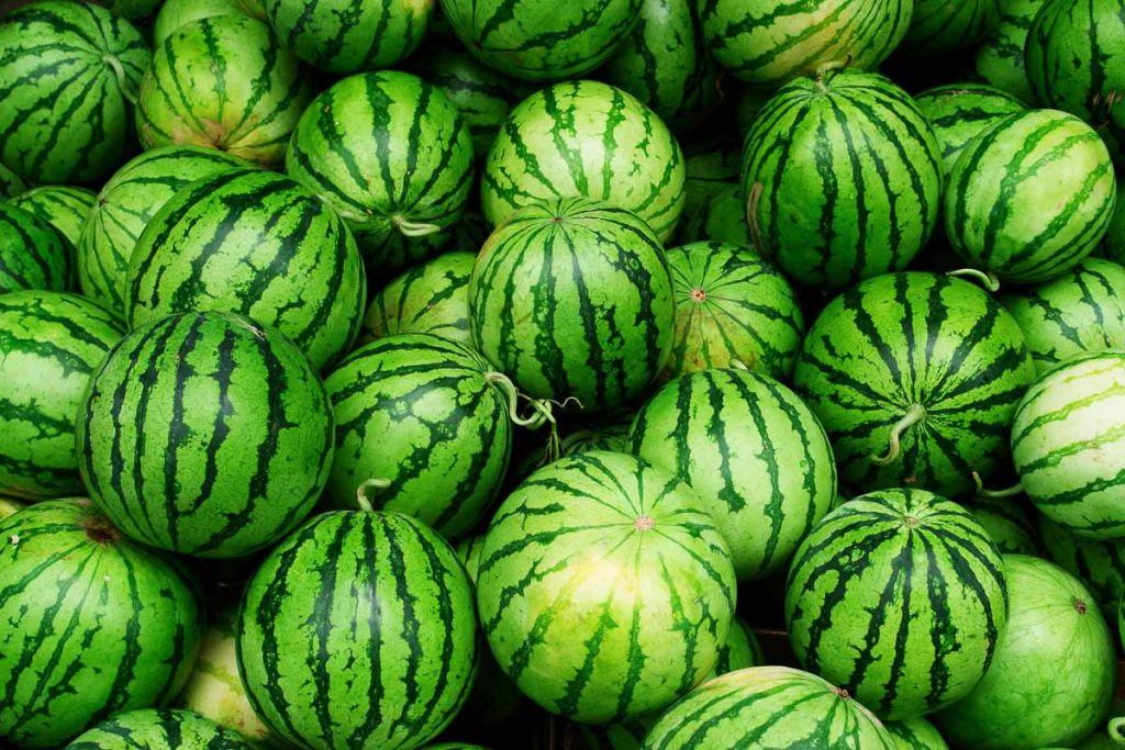 large pile of whole, round green watermelons