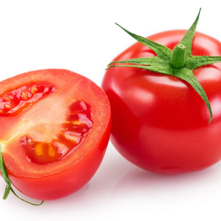Can to Feed Dogs Tomatoes?